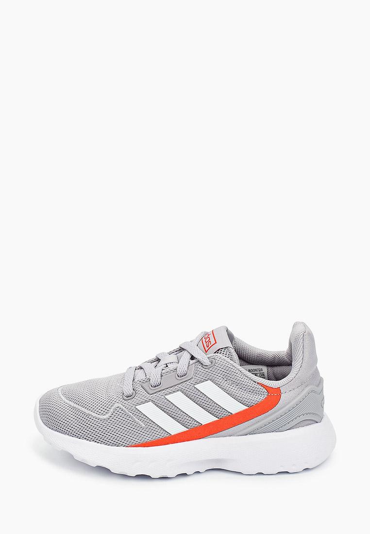 Кроссовки для мальчиков Adidas (Адидас) FV9601: изображение 1