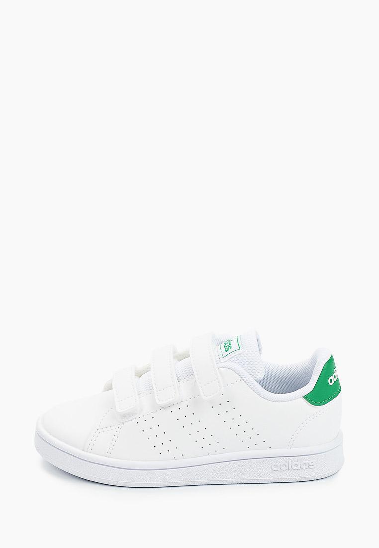 Кеды для мальчиков Adidas (Адидас) EF0223