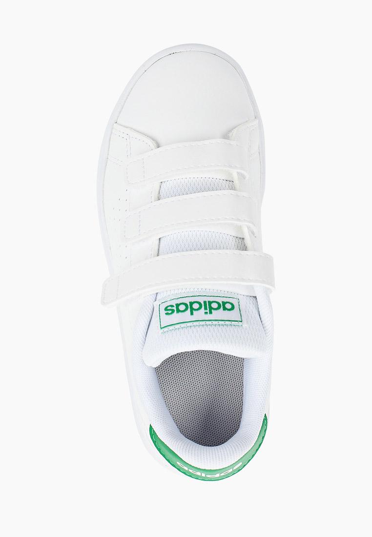 Кеды для мальчиков Adidas (Адидас) EF0223: изображение 4