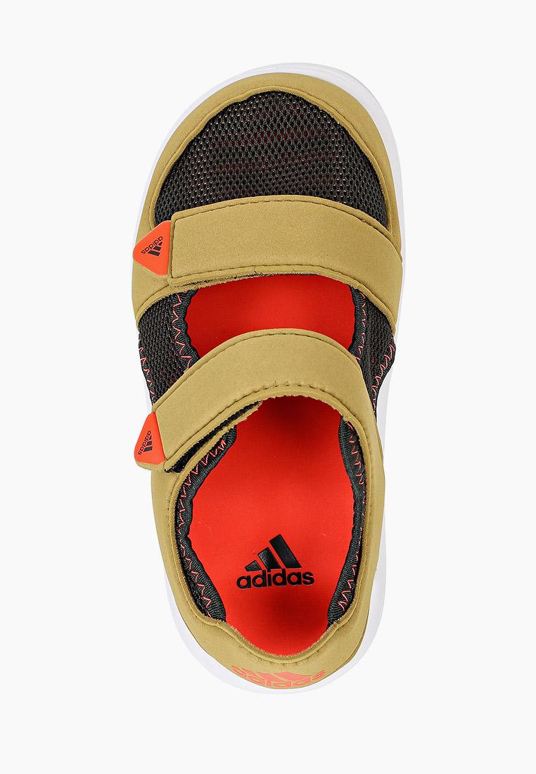 Сандалии Adidas (Адидас) FY6038: изображение 4