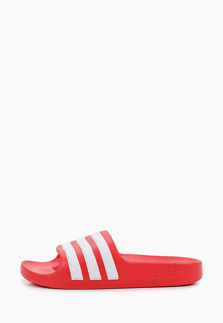 Сланцы для мальчиков Adidas (Адидас) FY8066: изображение 1