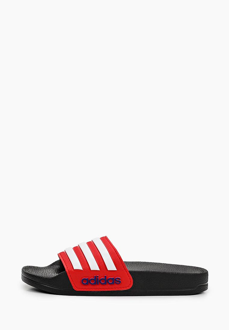 Сланцы для мальчиков Adidas (Адидас) FY8844