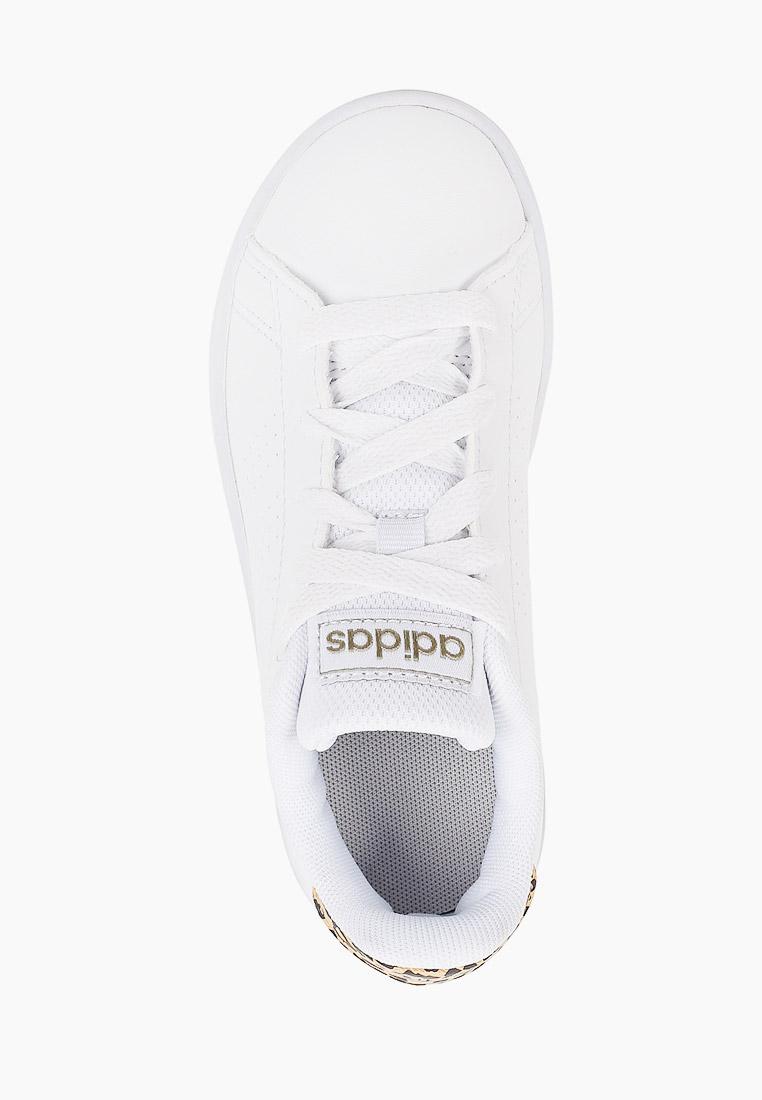 Кеды для мальчиков Adidas (Адидас) FY8875: изображение 4