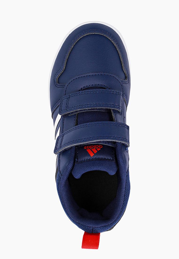 Кеды для мальчиков Adidas (Адидас) S24050: изображение 4