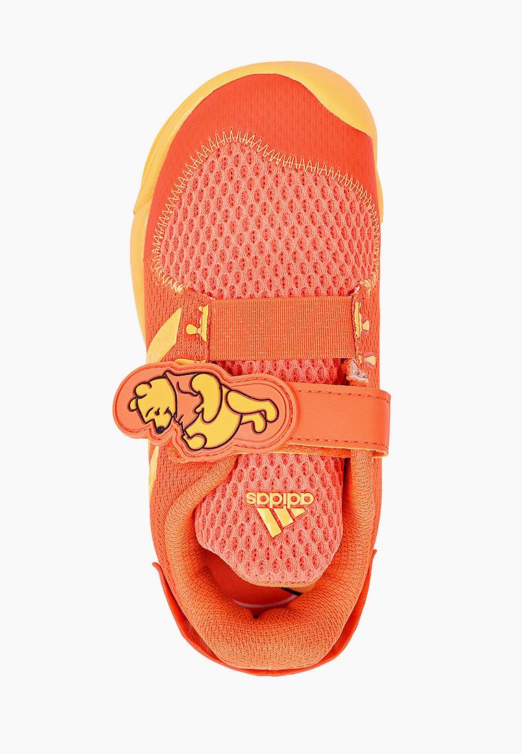 Кеды для мальчиков Adidas (Адидас) FY1430: изображение 4