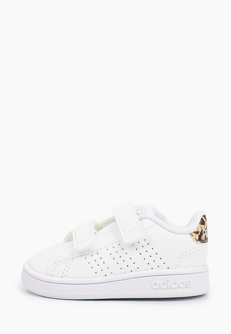 Кеды для мальчиков Adidas (Адидас) FZ0033