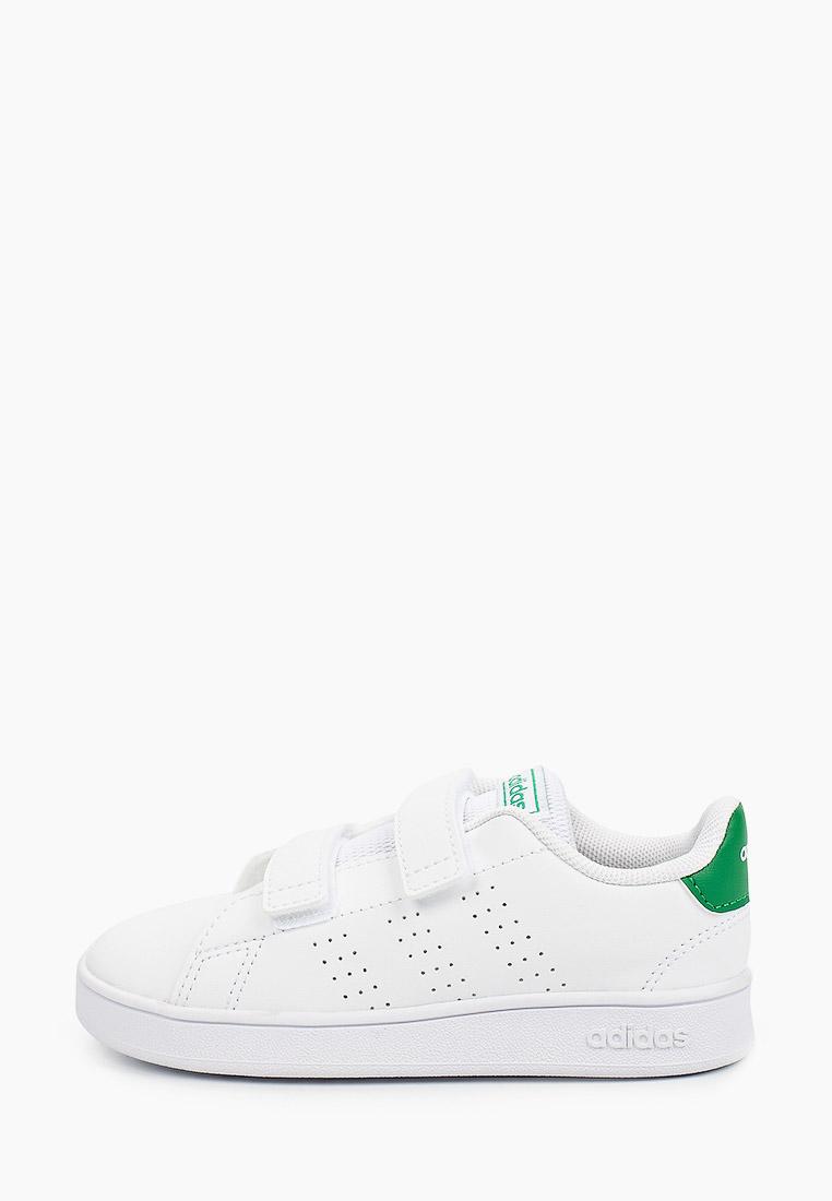 Кеды для мальчиков Adidas (Адидас) EF0301: изображение 1
