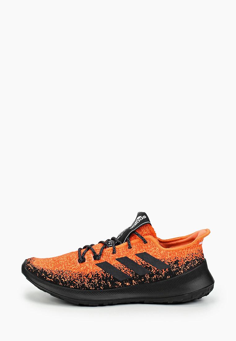 Мужские кроссовки Adidas (Адидас) G27233
