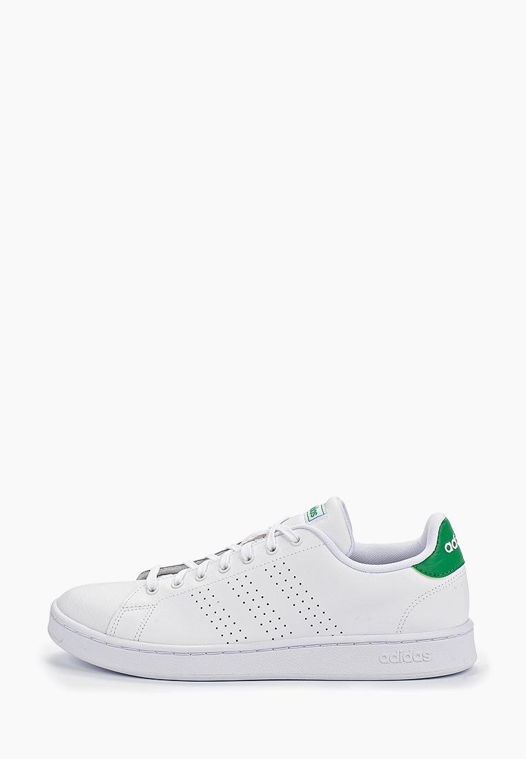 Мужские кеды Adidas (Адидас) F36424