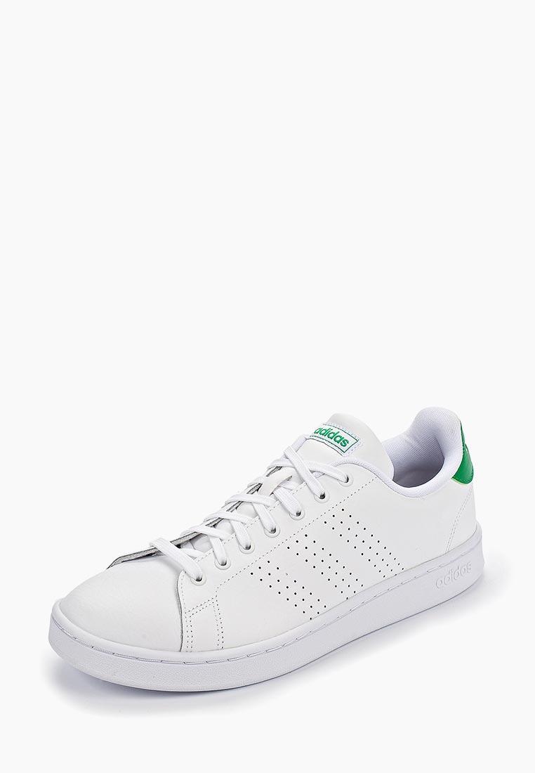 Adidas (Адидас) F36424: изображение 2