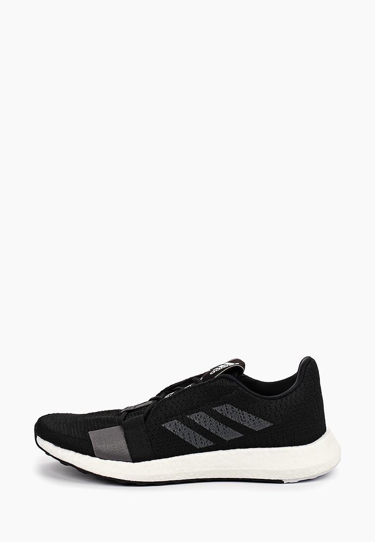 Мужские кроссовки Adidas (Адидас) F33908