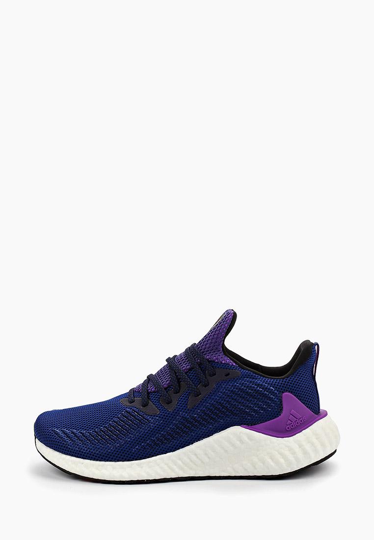 Мужские кроссовки Adidas (Адидас) G54157