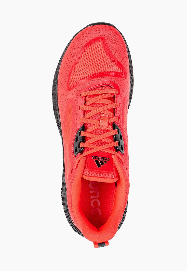 Мужские кроссовки Adidas (Адидас) EG1411: изображение 4