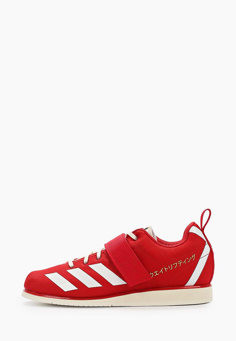 Мужские кроссовки Adidas (Адидас) EG5175
