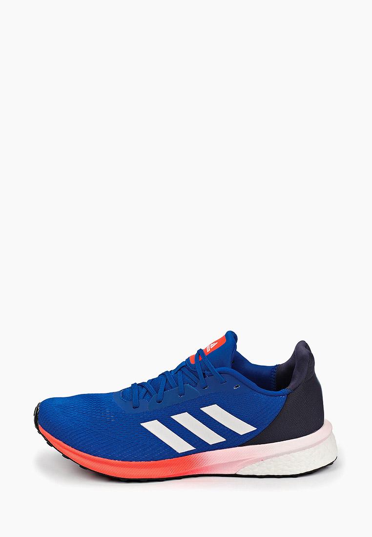 Adidas (Адидас) EH1535: изображение 1
