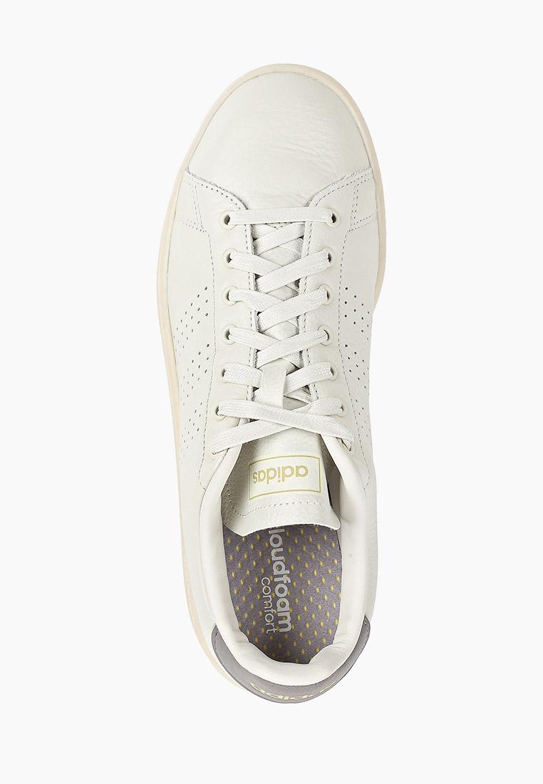 Adidas (Адидас) EG3767: изображение 4