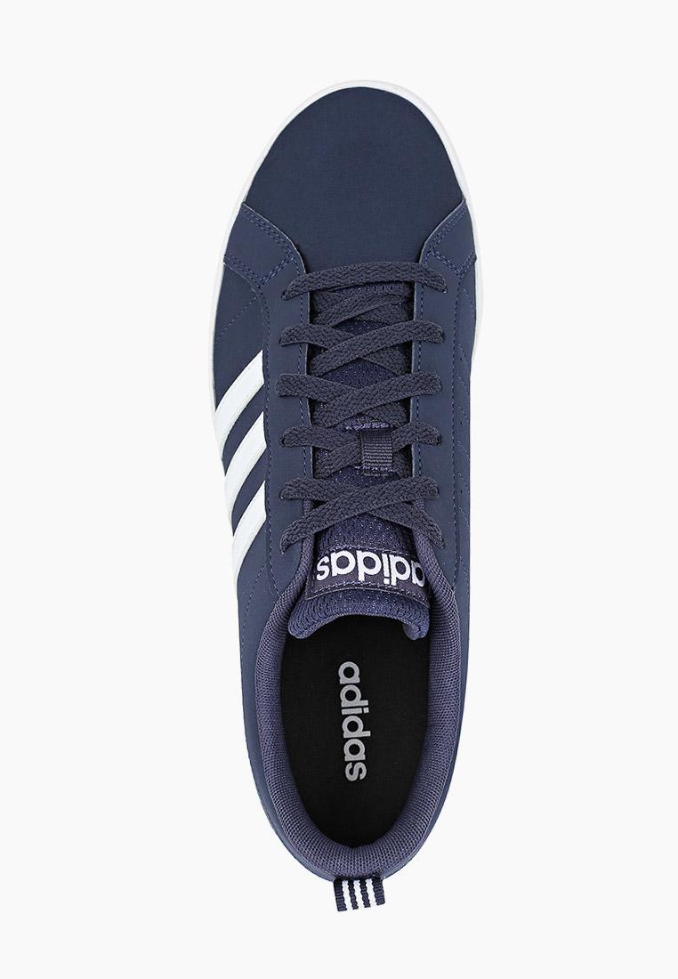 Adidas (Адидас) EF2369: изображение 4