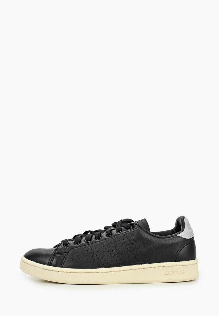 Мужские кеды Adidas (Адидас) FV8501