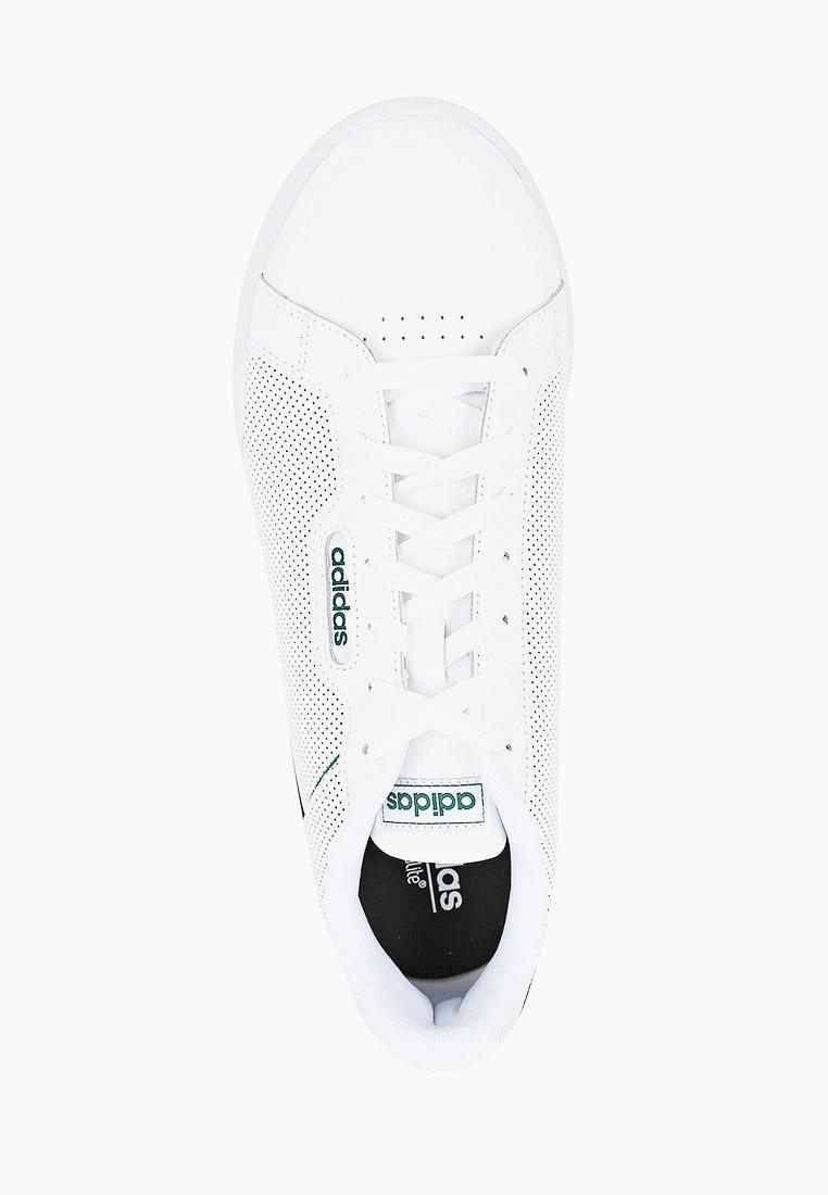 Мужские кеды Adidas (Адидас) FW5772: изображение 4