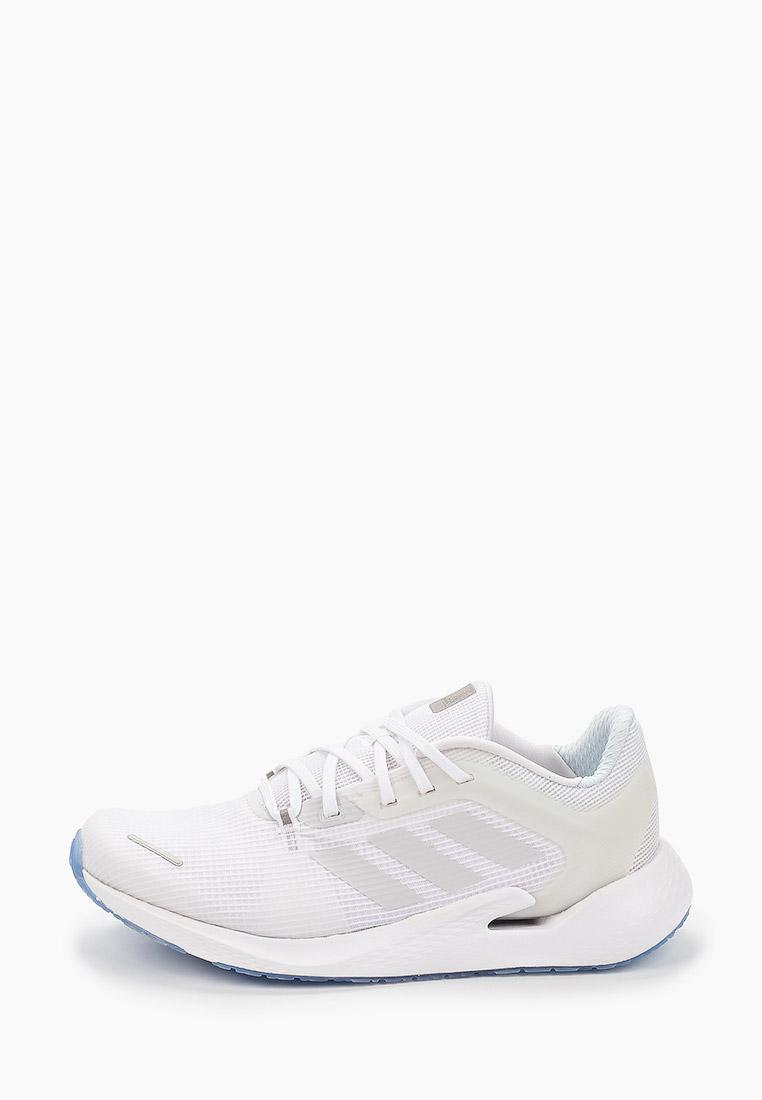 Мужские кроссовки Adidas (Адидас) EG9600