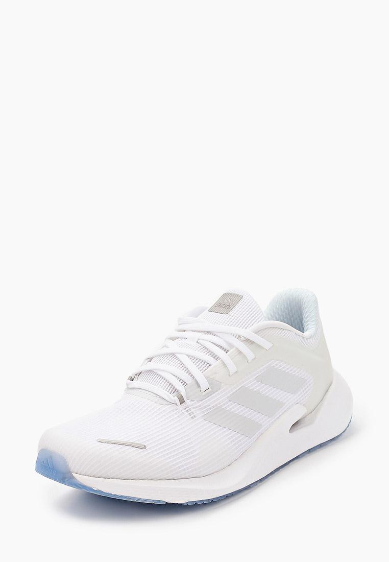 Adidas (Адидас) EG9600: изображение 2
