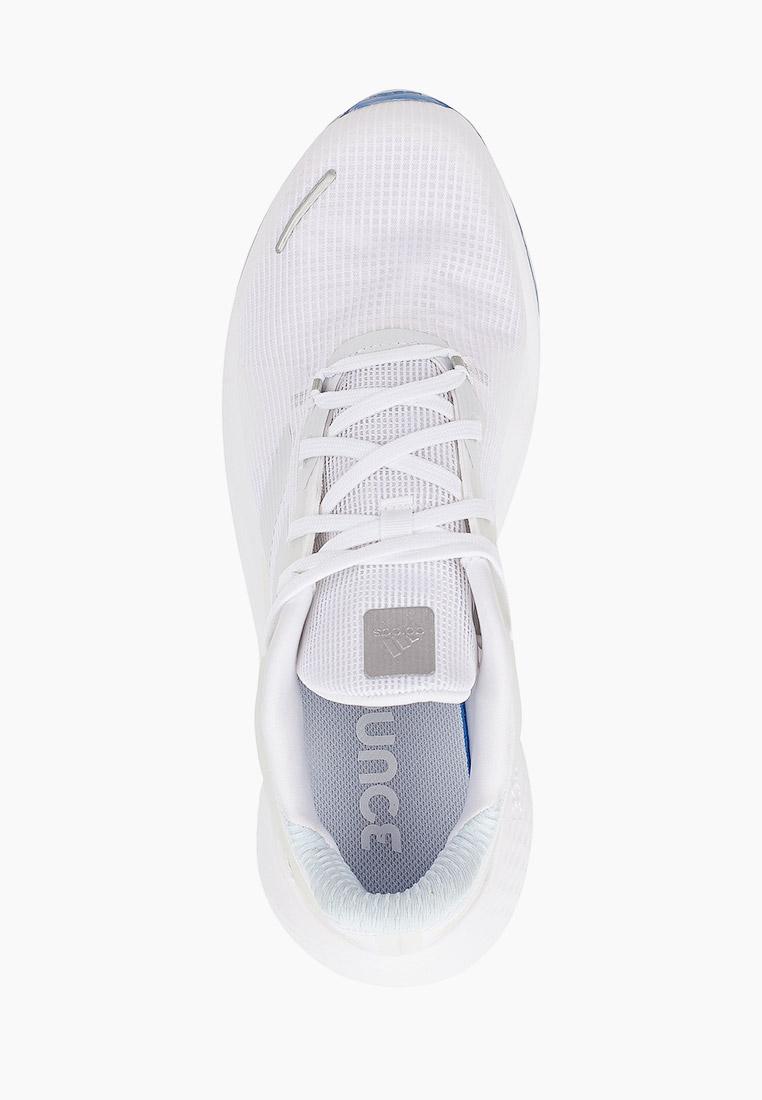 Adidas (Адидас) EG9600: изображение 4
