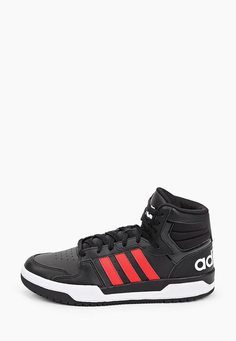 Мужские кеды Adidas (Адидас) FY6624
