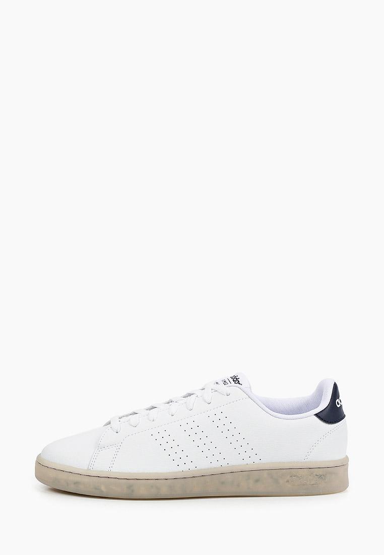 Мужские кеды Adidas (Адидас) FY6033