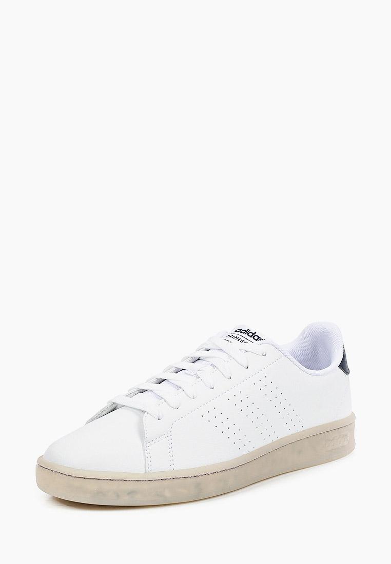 Мужские кеды Adidas (Адидас) FY6033: изображение 2