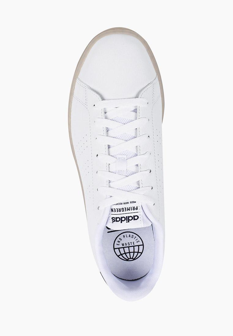 Мужские кеды Adidas (Адидас) FY6033: изображение 4
