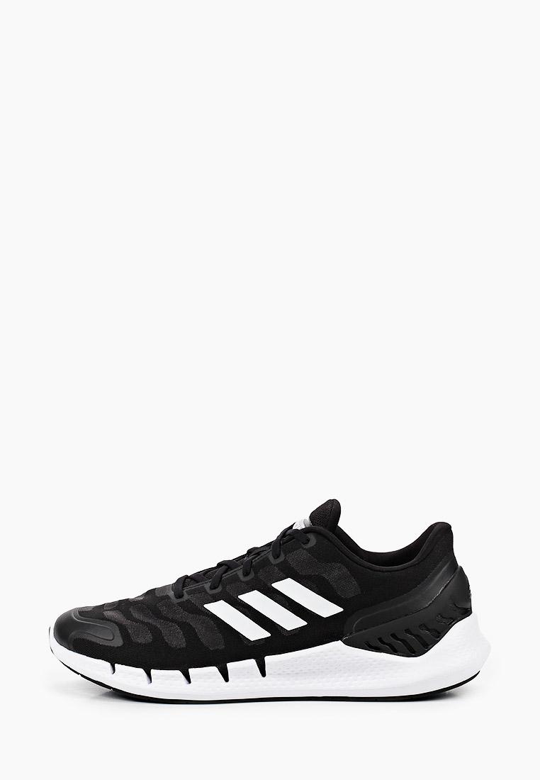 Мужские кроссовки Adidas (Адидас) FX7351: изображение 1