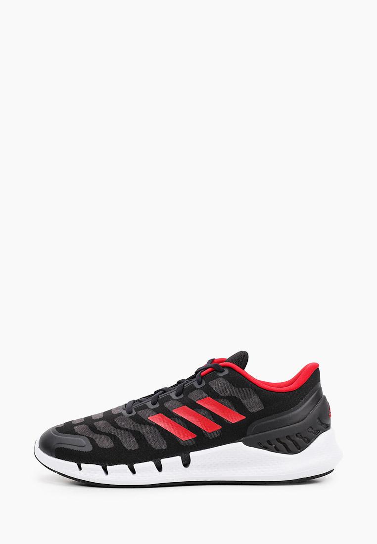 Мужские кроссовки Adidas (Адидас) FX7353: изображение 1