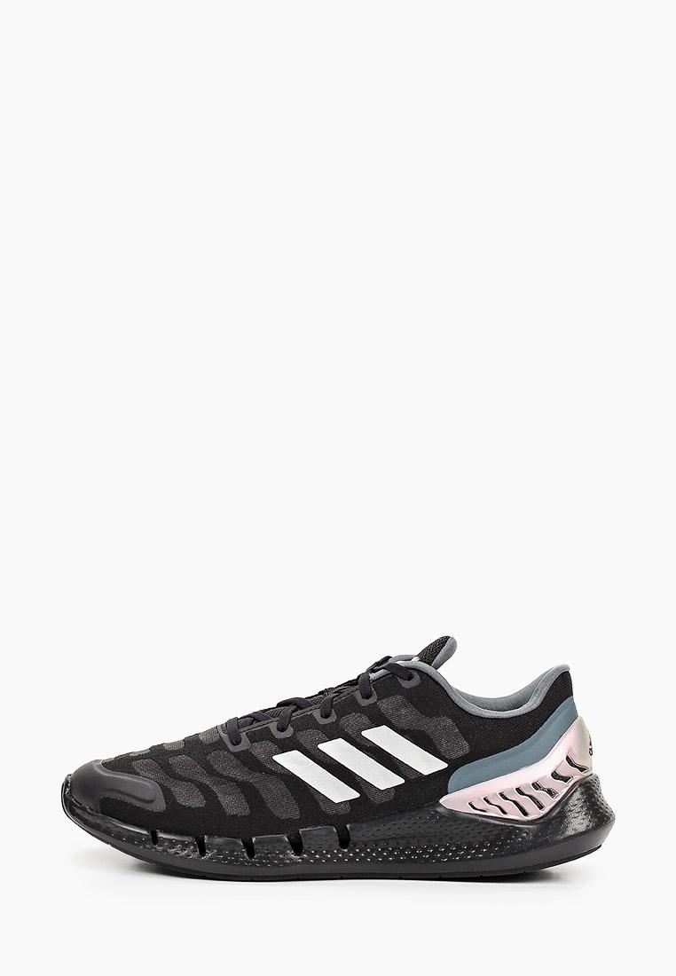 Мужские кроссовки Adidas (Адидас) FZ1744