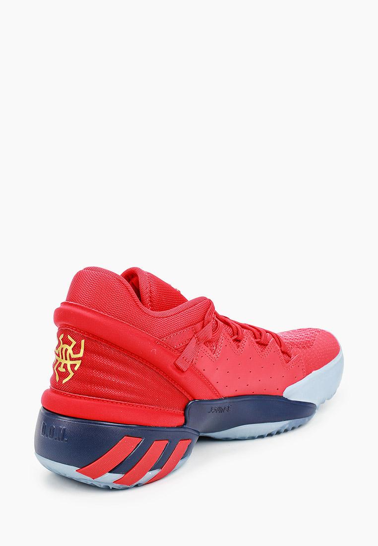 Мужские кроссовки Adidas (Адидас) FX6519: изображение 3