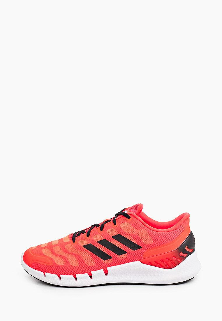 Мужские кроссовки Adidas (Адидас) FZ1746