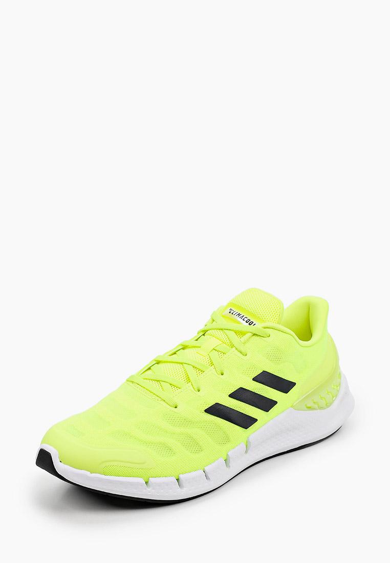 Мужские кроссовки Adidas (Адидас) FX7350: изображение 2