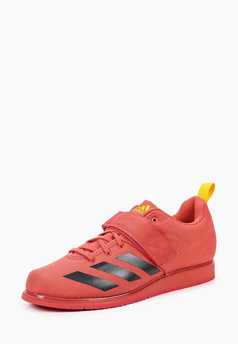 Мужские кроссовки Adidas (Адидас) FZ2513: изображение 2