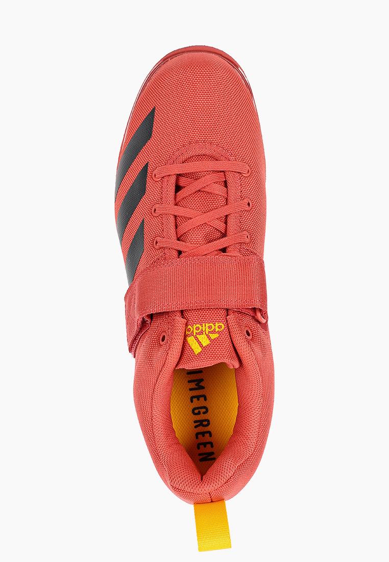 Мужские кроссовки Adidas (Адидас) FZ2513: изображение 4