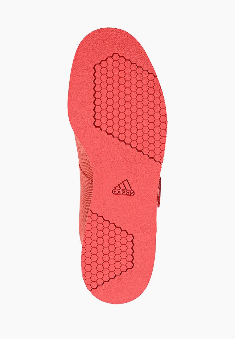 Мужские кроссовки Adidas (Адидас) FZ2513: изображение 5