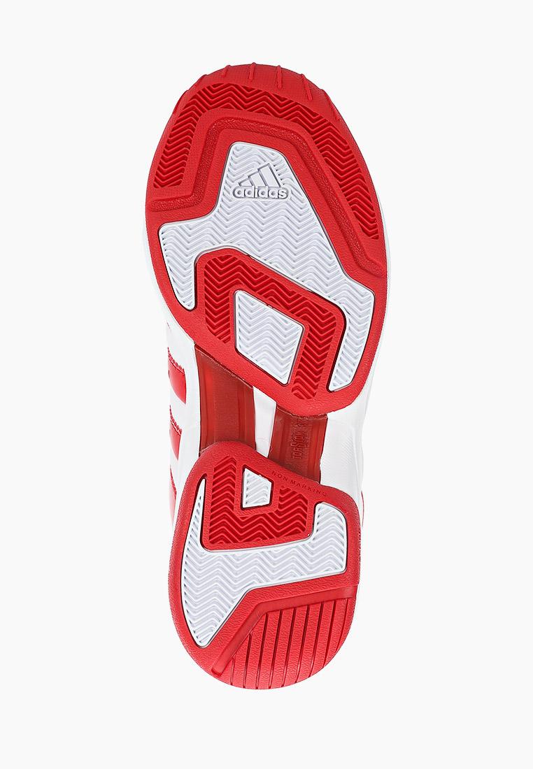 Мужские кроссовки Adidas (Адидас) EF9819: изображение 5