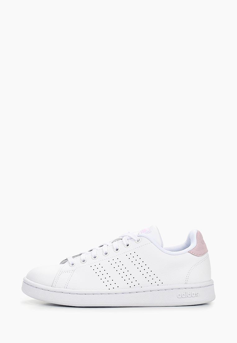 Adidas (Адидас) F36481: изображение 1