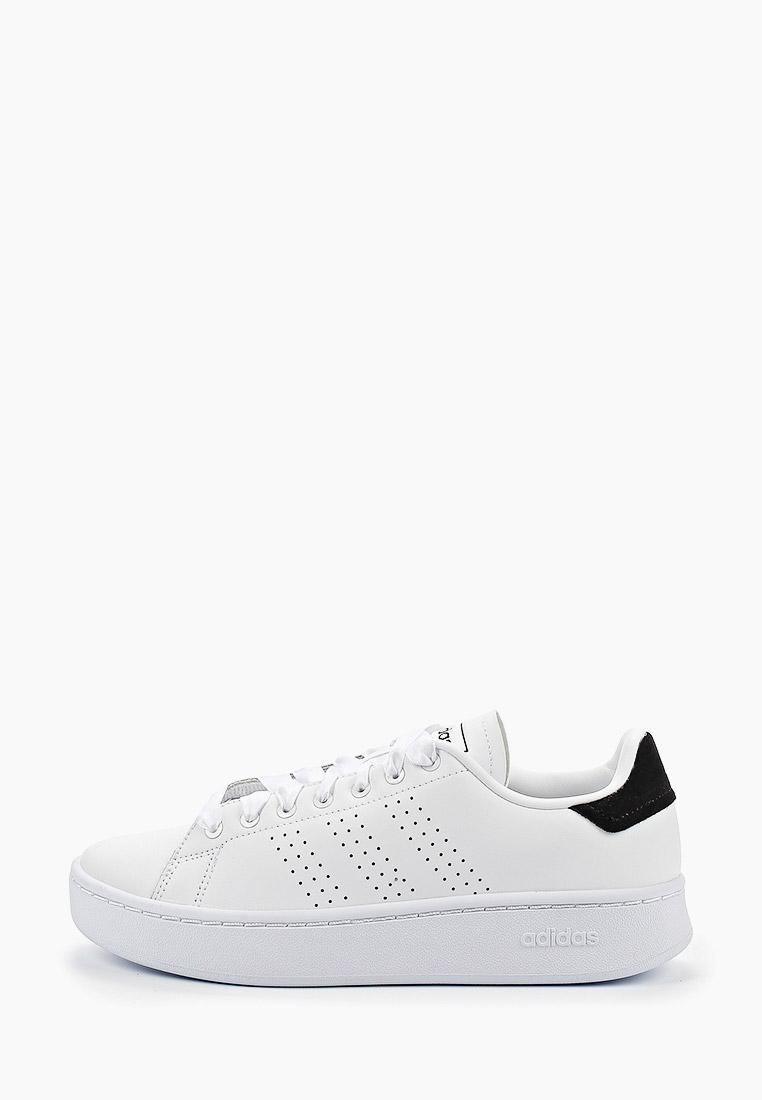 Женские кеды Adidas (Адидас) EF1034