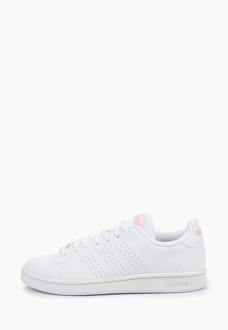 Adidas (Адидас) EE7510: изображение 1