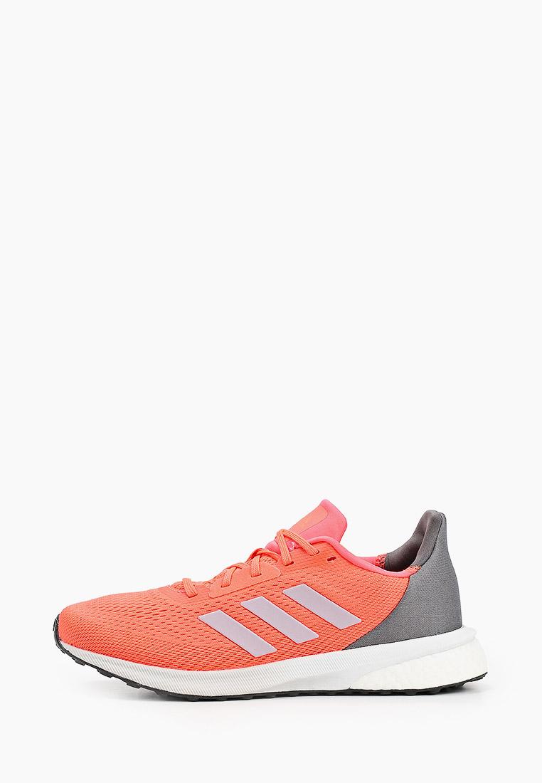 Adidas (Адидас) EH1527: изображение 1