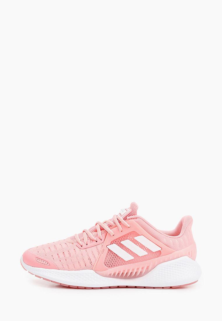 Adidas (Адидас) EG1119: изображение 1
