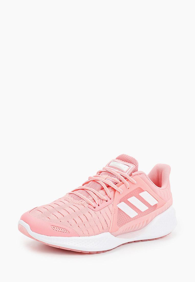 Adidas (Адидас) EG1119: изображение 2