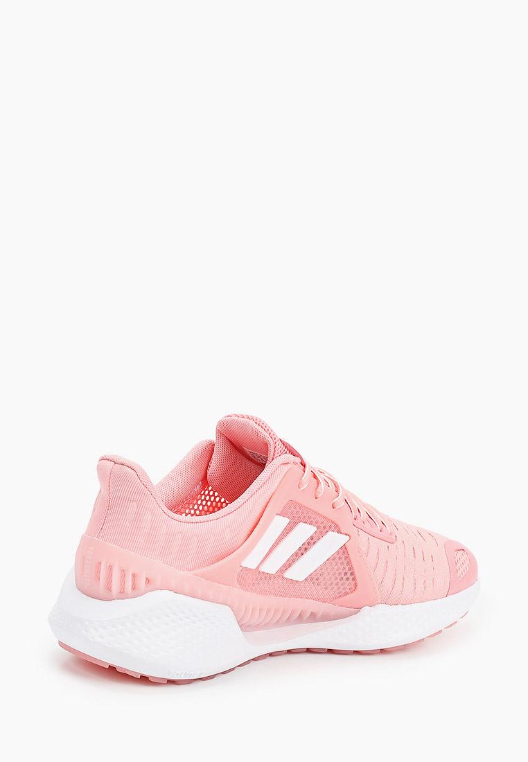 Adidas (Адидас) EG1119: изображение 3