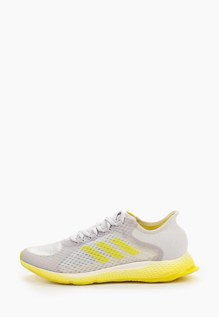 Женские кроссовки Adidas (Адидас) EG1096