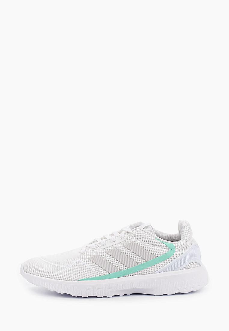 Adidas (Адидас) EG3698: изображение 1
