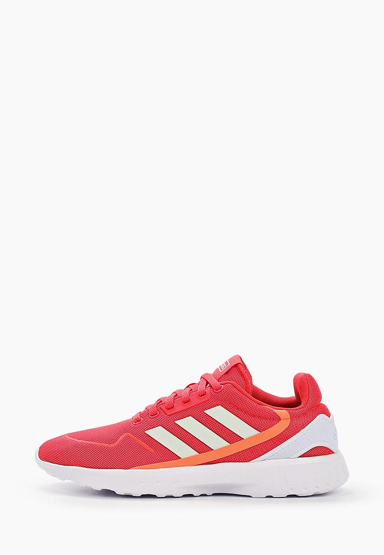 Женские кроссовки Adidas (Адидас) EG3699